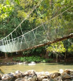Taman Negara Johor Endau-Rompin